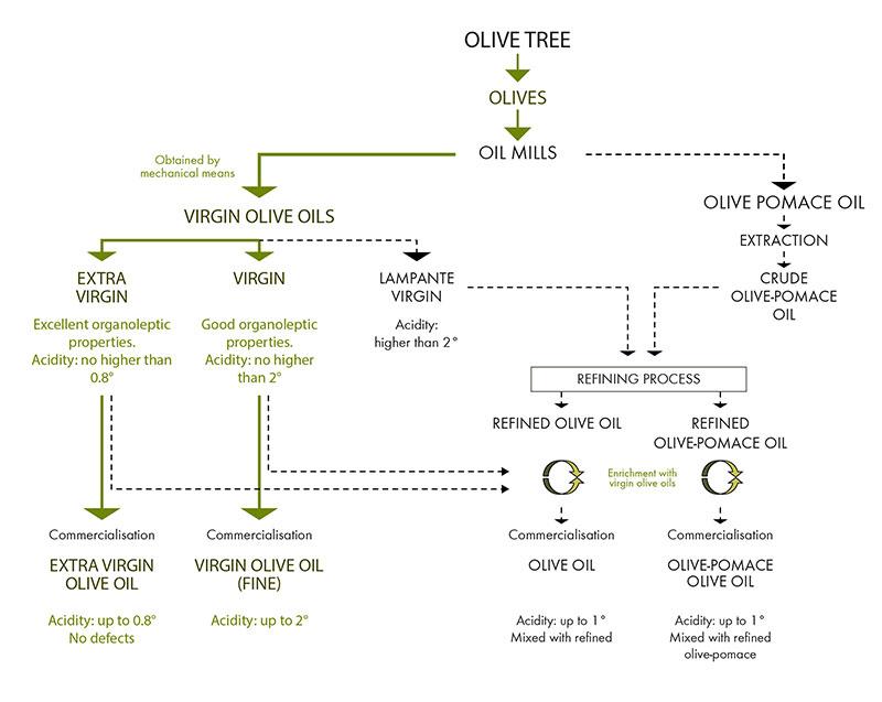 Classification oil oleo Ontur - oleo Ontur